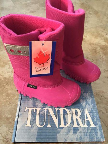 Tundra teddy оригинал из Канады, бесплатная доставка