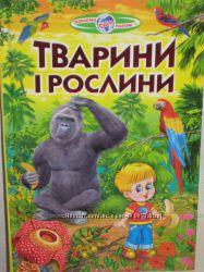 Тварини і рослини
