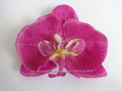 Головки орхидей опт розница