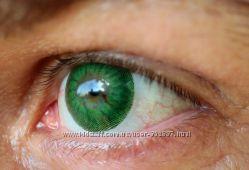 Зеленые цветные линзы