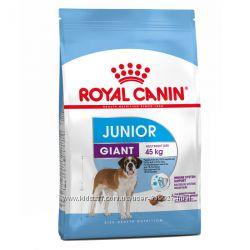 Сухой корм для щенков Royal Canin Giant Junior