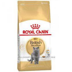 Сухой корм для котов Royal Canin British Short Hair 34