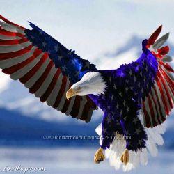 American Eagle срочная сп