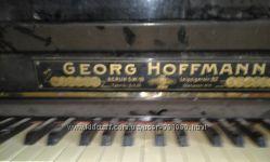 Georg Hoffmann не дорого