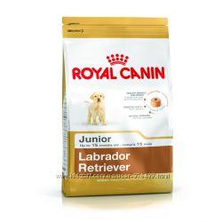 Royal Canin Labrador Retriever Junior и Adult корм для Лабрадоров