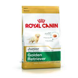 Royal Canin Golden Retriever Junior и Adult корм для Голден Ретриверов