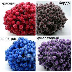 калина сахарная для декора и рукоделия, расцветки