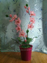 Фиалки и орхидеи из бисера