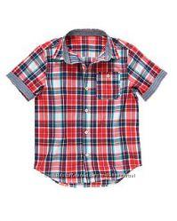 Рубашка  Gymboree 4