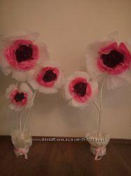 цветы на прокат