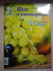 Все о винограде.  Сорта плодовых и ягодных