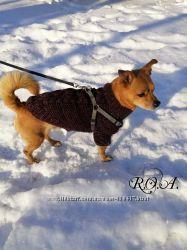 Вязанная одёжка для собак и кошек. Ручная работа