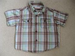 Рубашка  early days 12-18см 80 см большемерит
