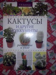 Цветоводство, Кактусы, Цветы