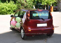 Виниловые наклейки на автомобиль для выписки из роддома