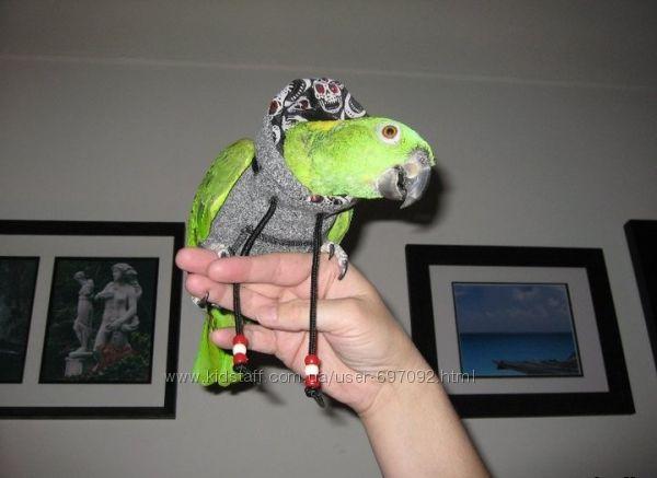 Продается одежда для попугаев