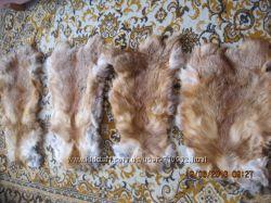 Шкурки лисы для рукоделия