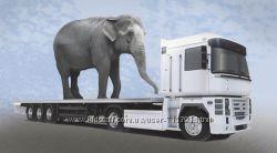 в оформлении и получении специальных разрешений на проезд транспортных сред