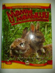Чудеснейшая детская мини энциклопедия о животных Мамы и малыши