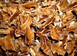 Перегородки грецкого ореха. 1 стакан