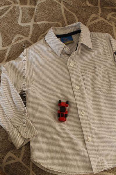 рубашка хлопок мелкая полоска Topolino