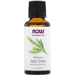 NOW Foods Эфирное масло Чайного дерева Tea Tree 100 pure, 30ml