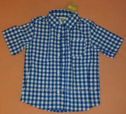 Crazy8 Рубашка на мальчика 4Т с коротким рукавом