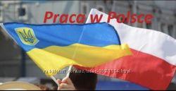 Работа в Польше, Литве, Словакии легально