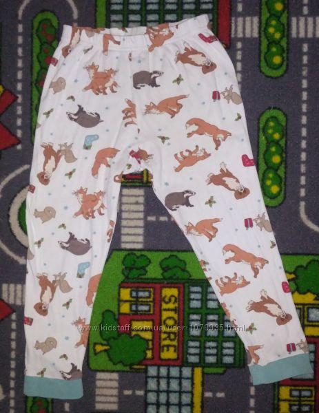 Прикольные штаны хб Пижама или для дома Лисичка  Классные штанишки, удобные