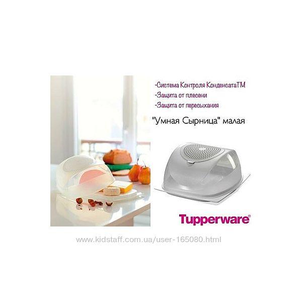 Умная сырница малая Tupperware, в наличии