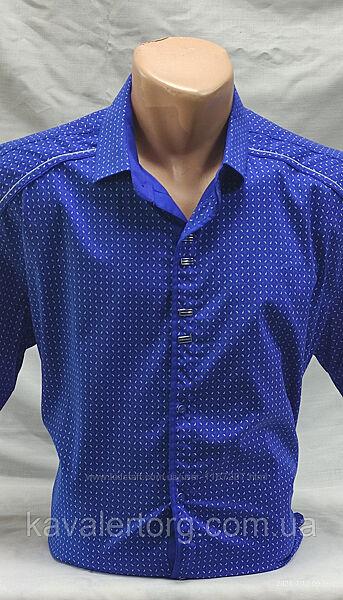 Шведка мужская NOSEDA синяя в мелкий рисунок 2XL