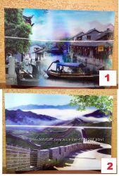 Картина голограмма 3Д Китай стерео глубина объем эффект красиво декор 1шт