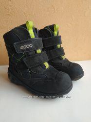 Ботинки Ecco, зима