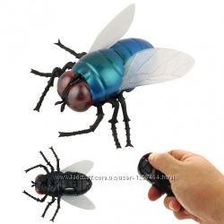 насекомое на Ру. Как живое, разные виды