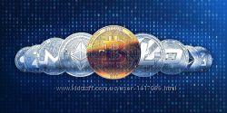 Биткоин, криптовалюта, крипто биржа, exmo, ексмо, помощь начинающим