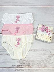 Нижнее белье Katamino для девочки